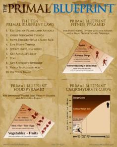 the-primal-blueprint